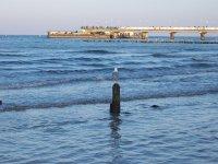 Wypoczynek nad morzem